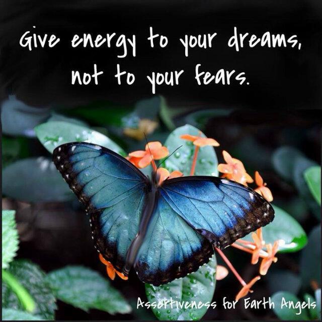 fears butterfly