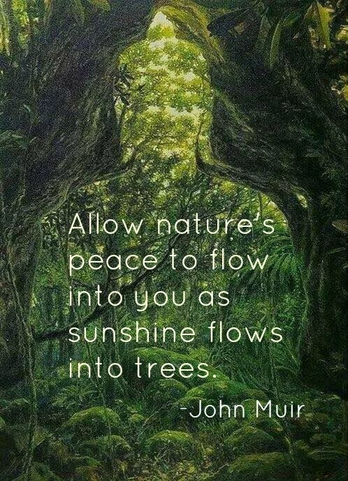 nature and stress