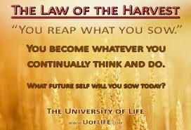 imagesthe law of harvest reap what you sow