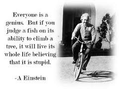 Image gifted Einstein 1