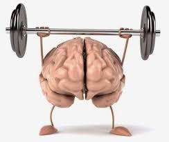 images (4)Brain