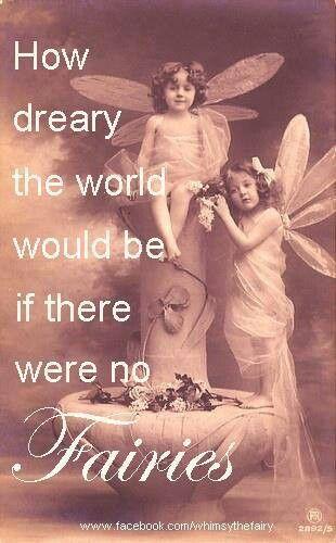 fairy 1 d