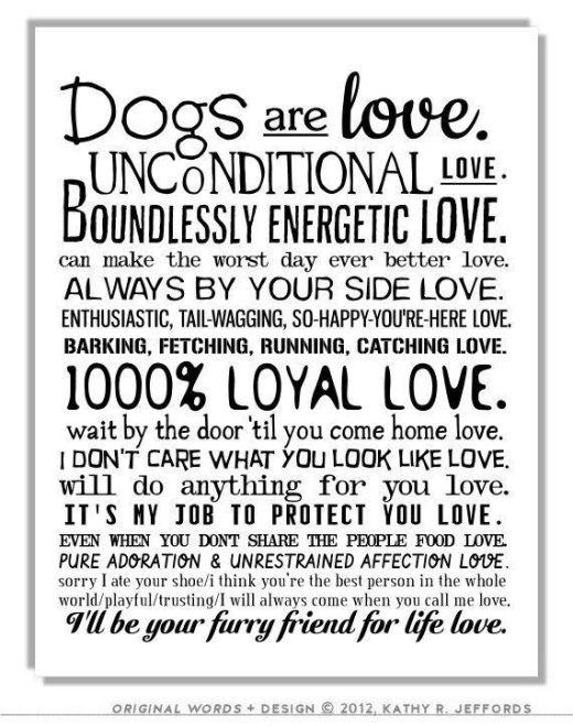 love life 3