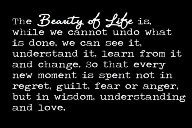 beauty of life 1