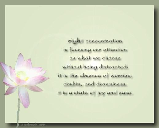 concentration 1