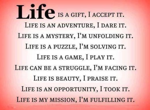 mystery life 4