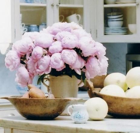 beautiful sunday flowers