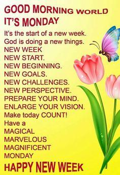 monday new week