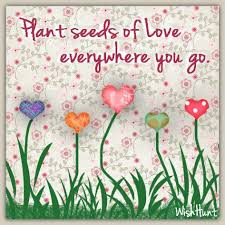 images seeds of love