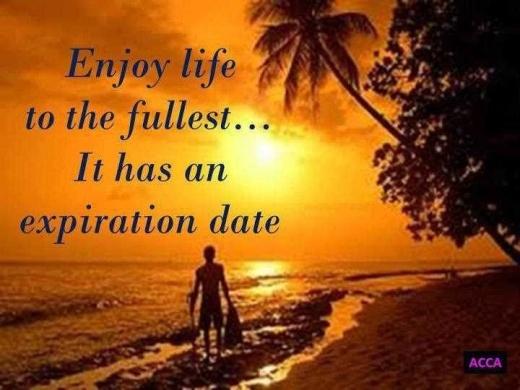 enjoy life 5