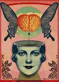images (4) brain 2
