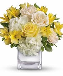 images easter flowers white and yellow